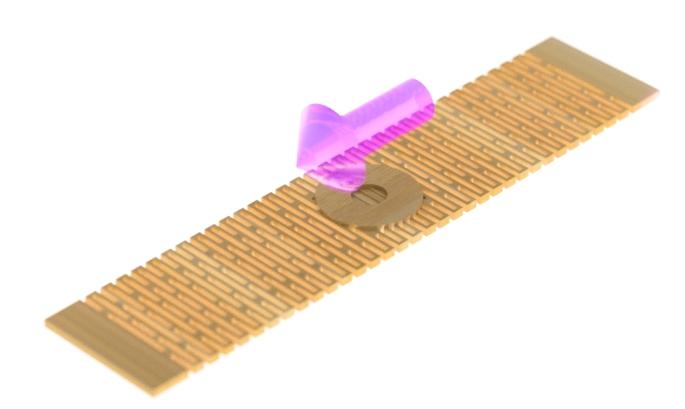 Bamboo Wristband