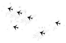 plane graph